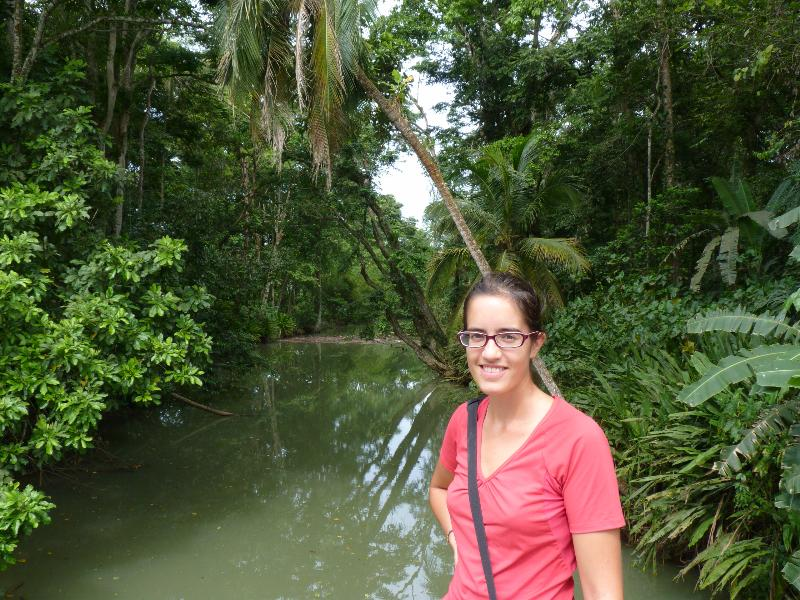 Mangrove Puerto Viejo