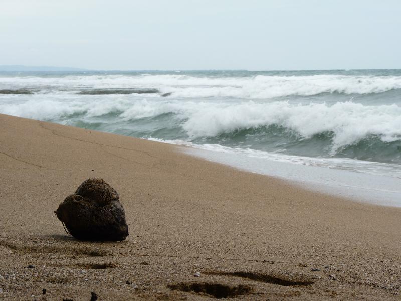 plage Puerto Viejo