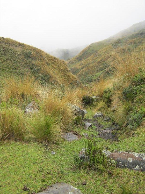 Trek du chemin de l'Inca - 1