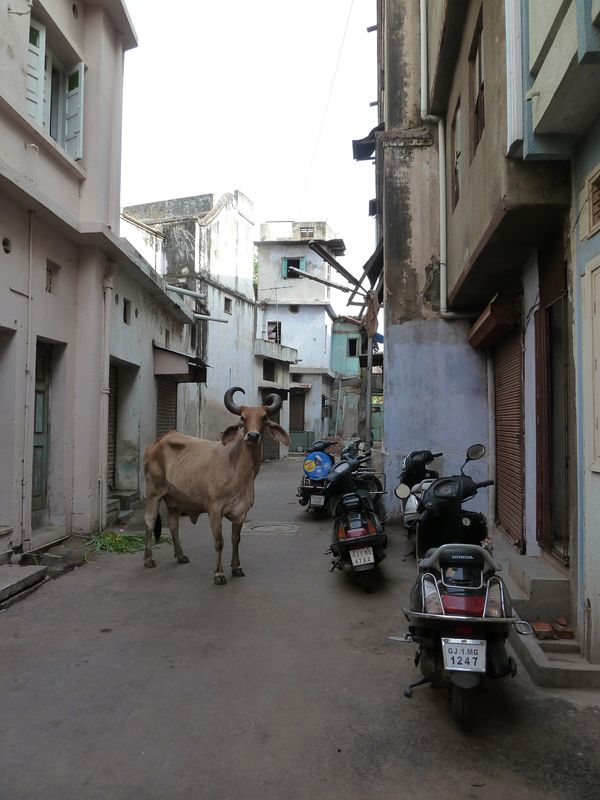 back alley of a Pol, Ahmedabad, India