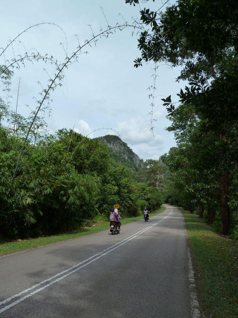 Sur la route de Gua Ikan, Dabong, Malaisie
