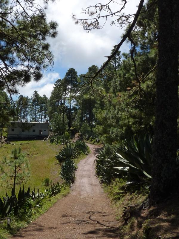 Randonnée à Cuajimoloyas - 3