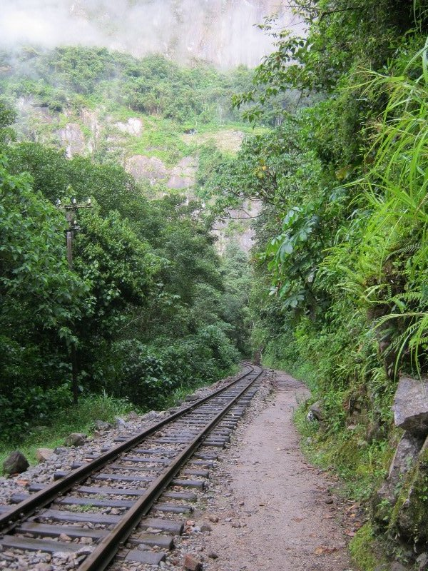 Rails du train pour Aguas Calientes