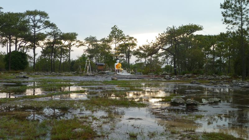 Buddha after the rain, Phu Kradung, Thailand